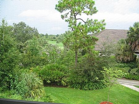View - Wild Pines - Bonita Bay A-303 - Bonita Springs - rentals