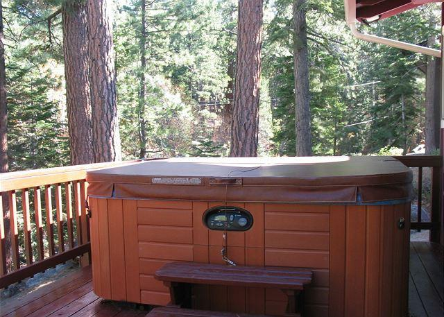 Tahoe, Rocky Point - Enjoy this cozy mountain cabin with a private hot tub! - South Lake Tahoe - rentals