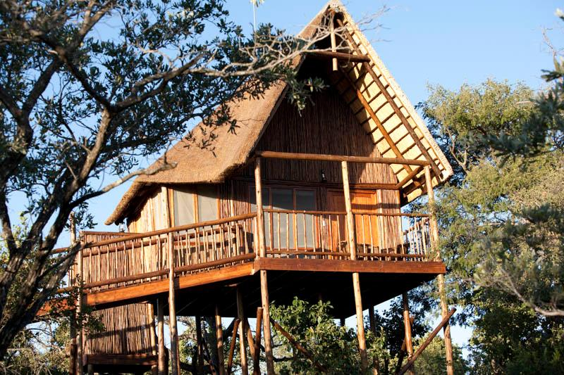 Our tree houses have mountain and sunset views with easy to use ramps, ensuite baths, outside shower - Bona Ntaba Self Catering Tree House Lodge - Hoedspruit - rentals