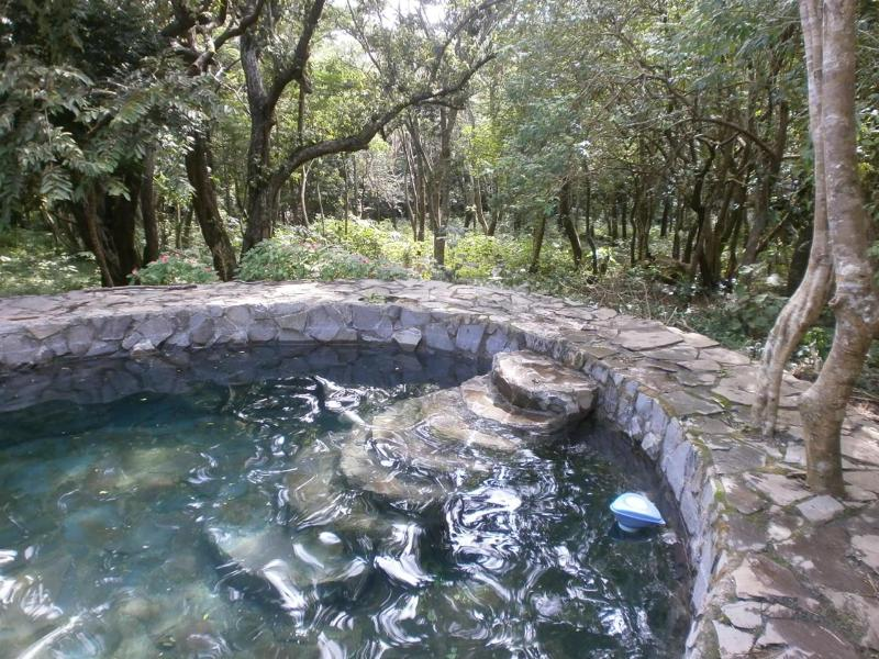 Mother Nature's Kiva Condo, very special just 4 U - Image 1 - Guayabo - rentals