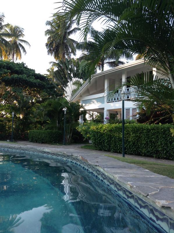 Our Paradise! - Cotorra Azul Beautiful Villa - Las Terrenas - rentals