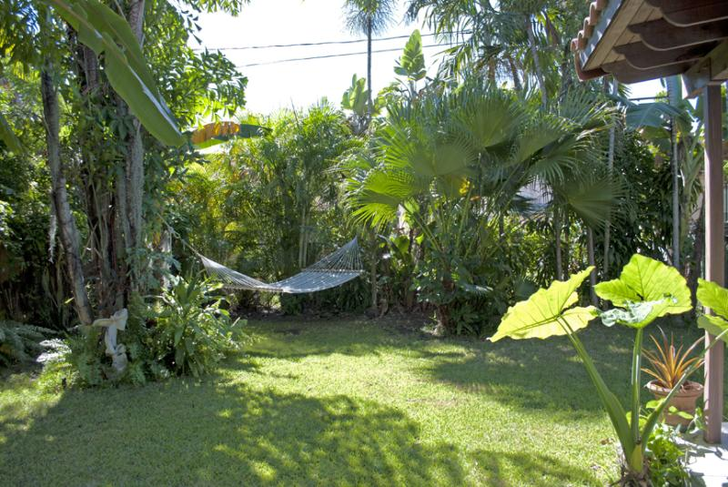 Garden facing South - Arts in the Tropics Cottage - Coconut Grove - rentals