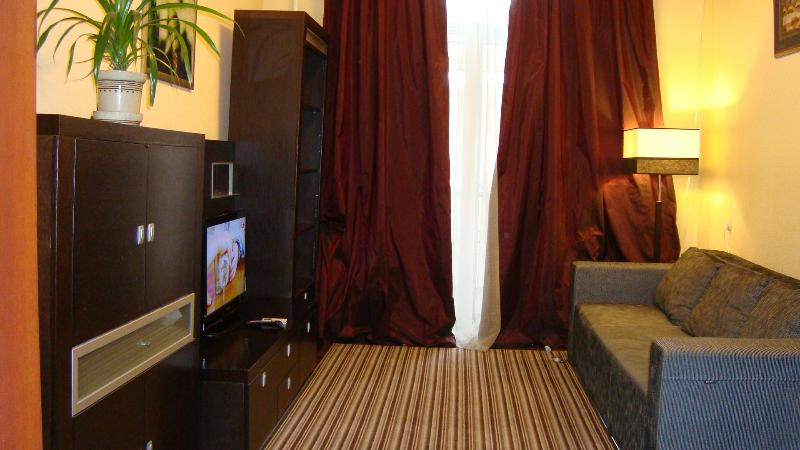 Cheap two-room flat in the center, free WI-FI - Image 1 - Kiev - rentals