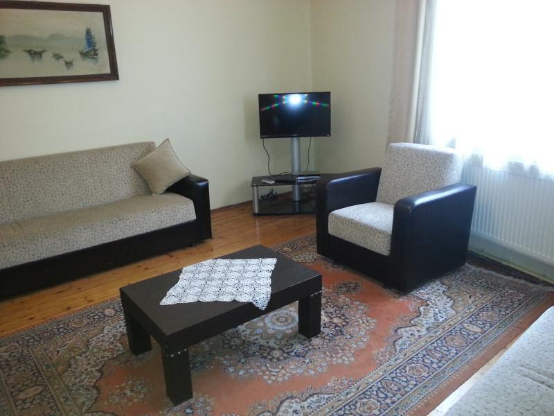 Apart in Sultanahmet2 - Image 1 - Istanbul - rentals