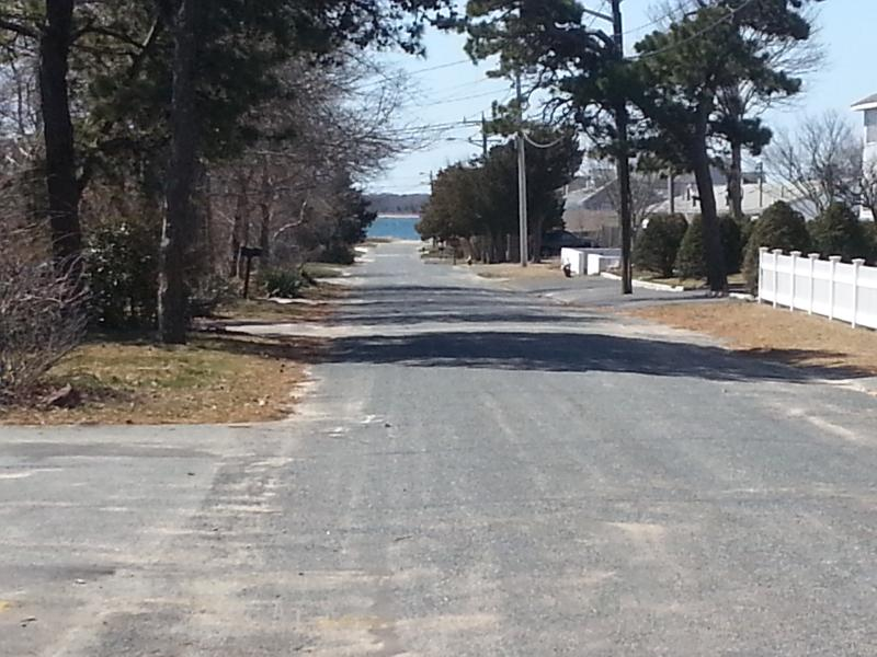 View from Driveway - The Cape Cod you remember - - West Yarmouth - rentals