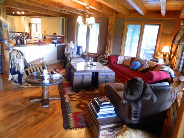 Living Room - Super Luxury Berkshire Ski Get Away - Stephentown - rentals