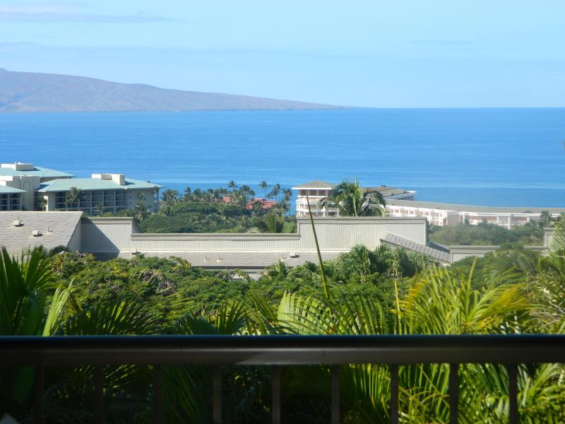 Ocean View from Our Lanai - Maui Wailea Townhouse, 2BR, 2.5 Ba, air conditioned, sleeps 8, ocean view - Wailea - rentals