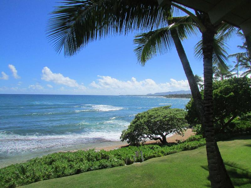 Your view of paradise! - Direct Oceanfront with the Beach at Your Feet - Kapaa - rentals