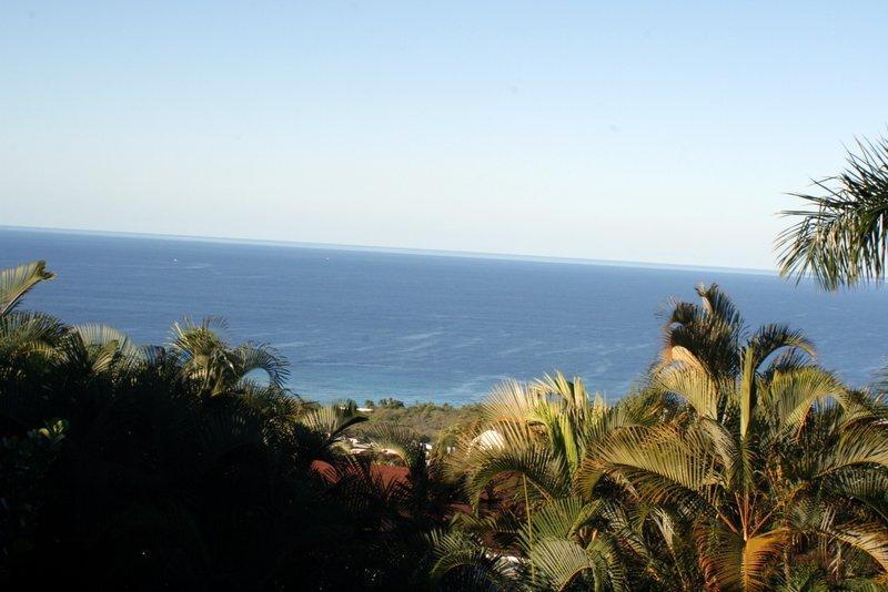 Ocean View from the Lani - Ocean View! Spacious Retreat Close To Town/Beaches - Kailua-Kona - rentals