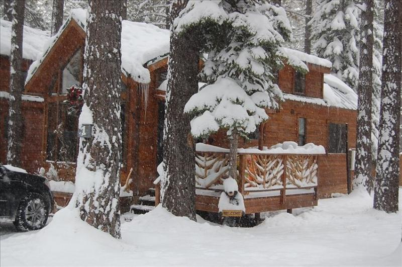 Front of Cabin in Winter - Cozy Knotty Pine Cabin - South Lake Tahoe - rentals