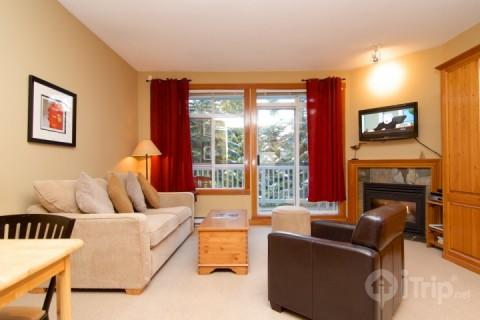 Bright living space with fireplace, sofa bed and murphy bed - Granite Court charming studio Townhome only steps from the Village unit #308 - Whistler - rentals