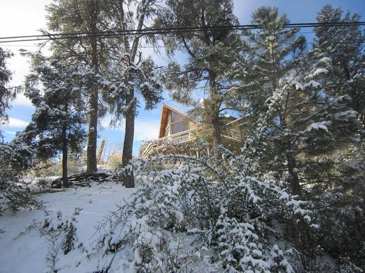 Peace surrounds us in Los Padres National Forest - Lovely Mountain-View Retreat - Pine Mountain Club - rentals