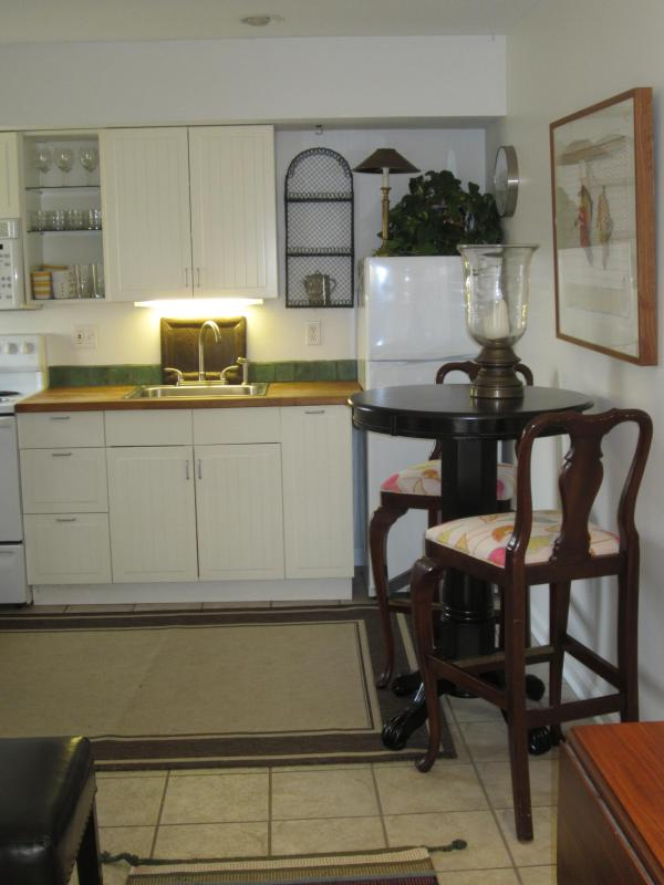 Walking into the property - Quirky Guest House in West Asheville - Asheville - rentals