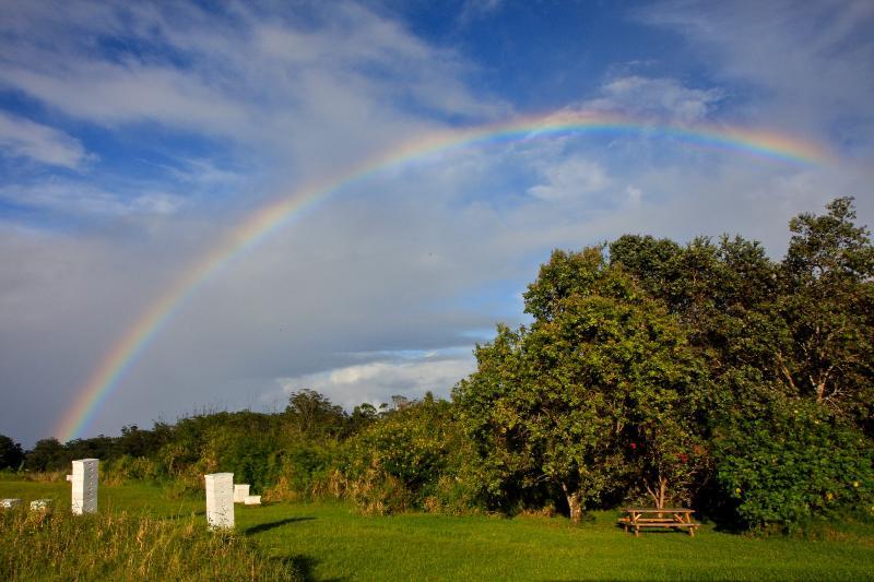 Rainbow over our farm and bee hives - Rainbow Bee Farm Cottage - Honokaa - rentals