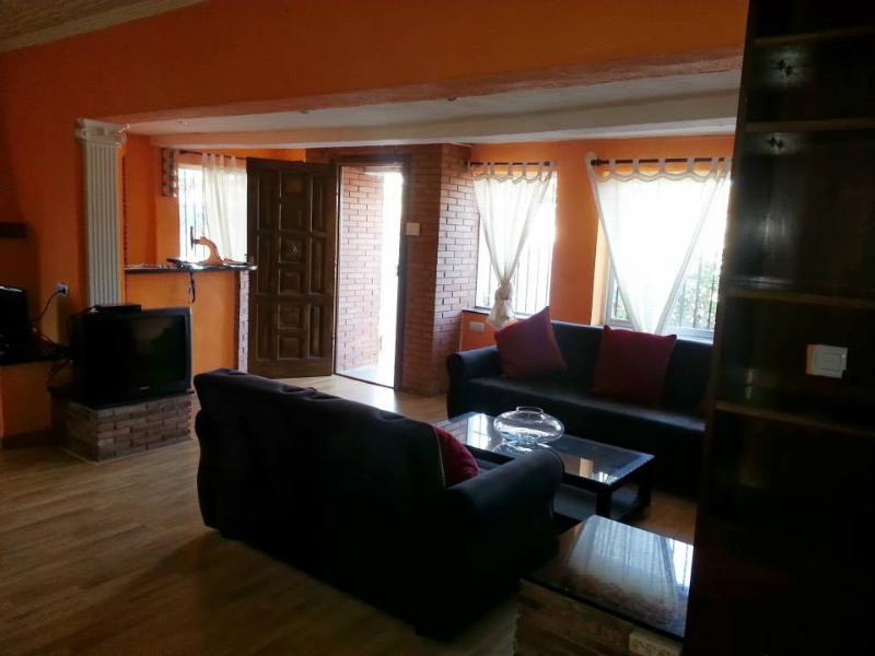 salon - Mediterranean Villa for rent - Malaga - rentals