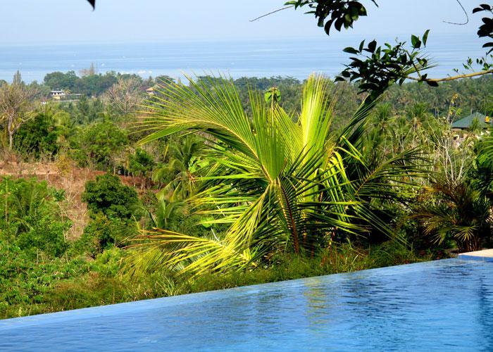 from Villa and pool: view over the North coast of Bali - 5-bdr spacious VILLA in BALI overlooking LOVINA BAY. - Lovina - rentals