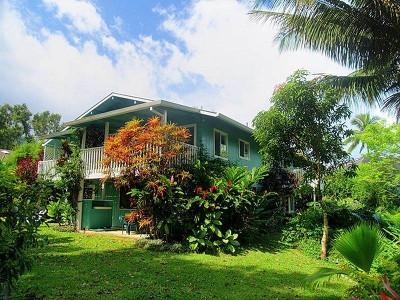 Lovely Hawaiian-style suite in beautiful tropical setting - Lovely 2BR Apartment One Block To  Hanalei Beach - Hanalei - rentals