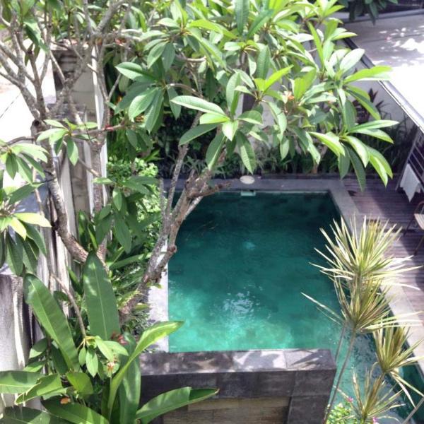 View to the Swimming Pool - Affordable 2bedroom House in Petitenget - Kerobokan - rentals