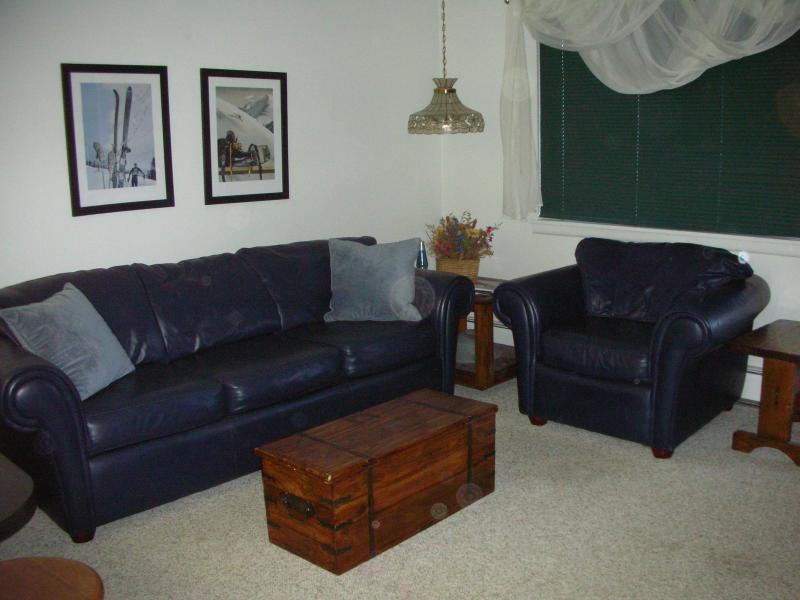 Living Room - Cozy One-Bedroom Condominium - Walk to Town - Hi Country Haus - Winter Park - rentals