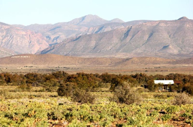 Wolvekraal - WOLVEKRAAL GUEST FARM in the Great Karoo - Prince Albert - rentals