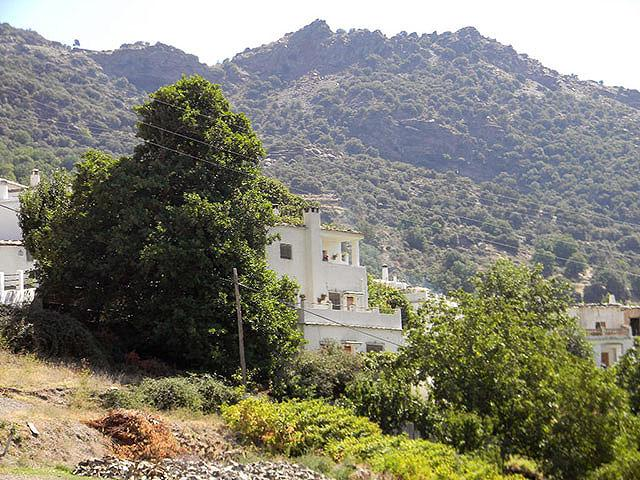 Almanzar de Bubion, The House - Holiday Rental in La Alpujarra for up to 6 Guests. - Bubion - rentals