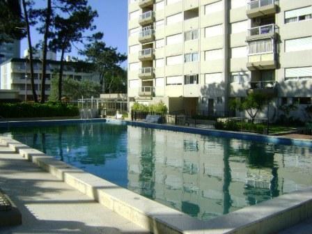 swimming pool - Punta del Este - Punta del Este - rentals