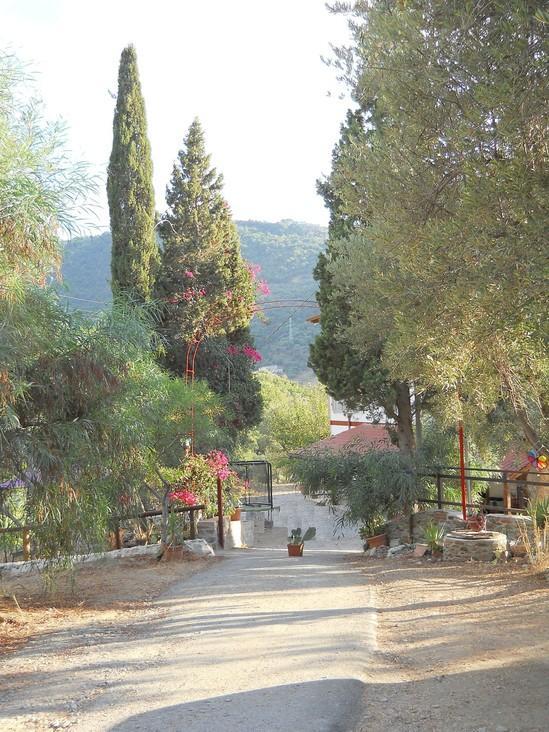 Casa vacanze between sea and countryside - Image 1 - Gioiosa Marea - rentals