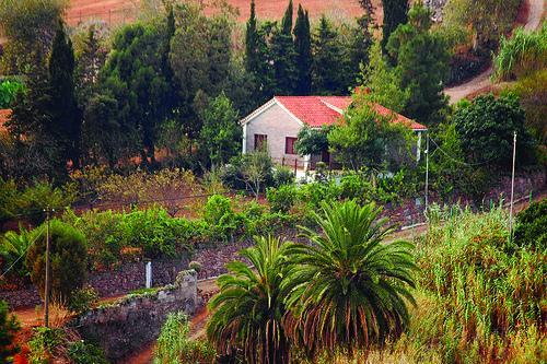 Holiday cottage in Teror (GC0080) - Image 1 - Las Nieves - rentals