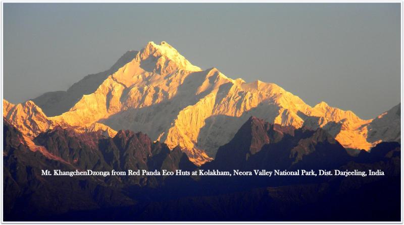 Mt. Kanchenjunga from Kolakham - Kolakham, Red Panda Eco Retreat, Neora Valley National Park. - Ambikapur - rentals