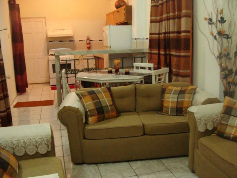 Living Room - Visitor's Accommodation In Trinidad - 2 Bedroom Apartments US$100/night - Port of Spain - rentals