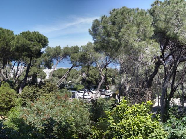 balcony view - Zimmer Panorama Vacation Apartment between Luxury - Haifa - rentals