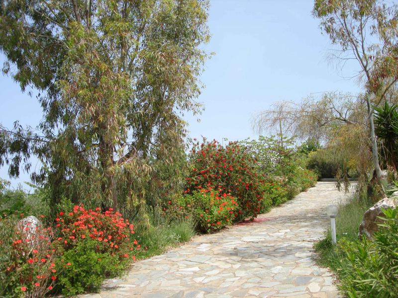 Villa Panorama - Image 1 - Kiparissia - rentals
