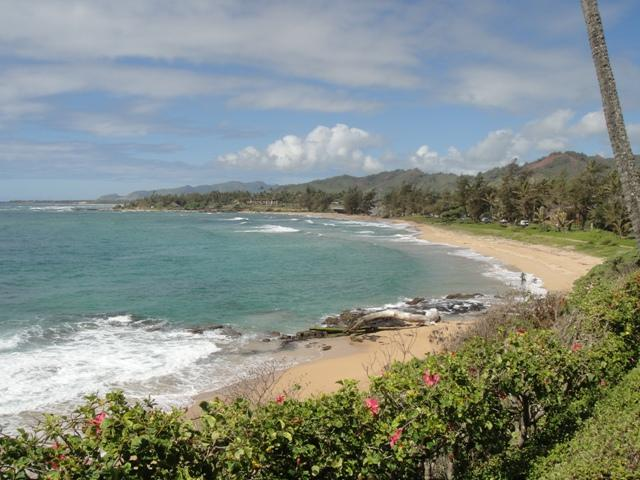 View of the coastline along Wailua Bay - Oceanfront Condo in Kapaa! - Kapaa - rentals