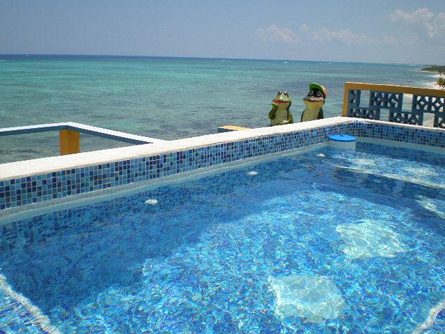 Roof Top Dipping Pool for 12 People With Roof Top Living Room and Bar - May/June $2,500 Villa Includes Cook, 2 Pools, WiFi - Tulum - rentals
