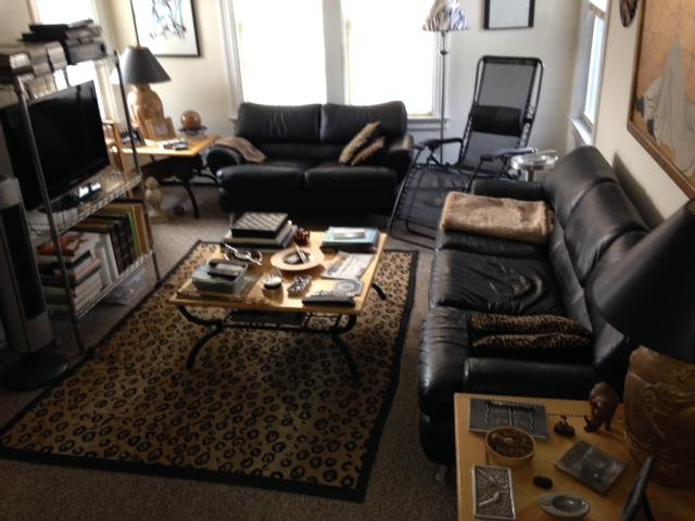 Living Room - SUPER BOWL RENTAL in Historic Sleepy Hollow, New Y - Elmsford - rentals