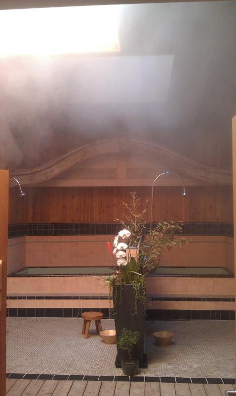 The Osento - The Miyazaki Bathhouse. Relax, Soak & Steam - Walnut Grove - rentals