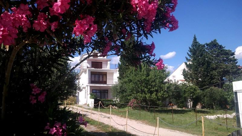 Lovely seaside apartment Miky 3  for 5 pax in Novalja - Image 1 - Novalja - rentals