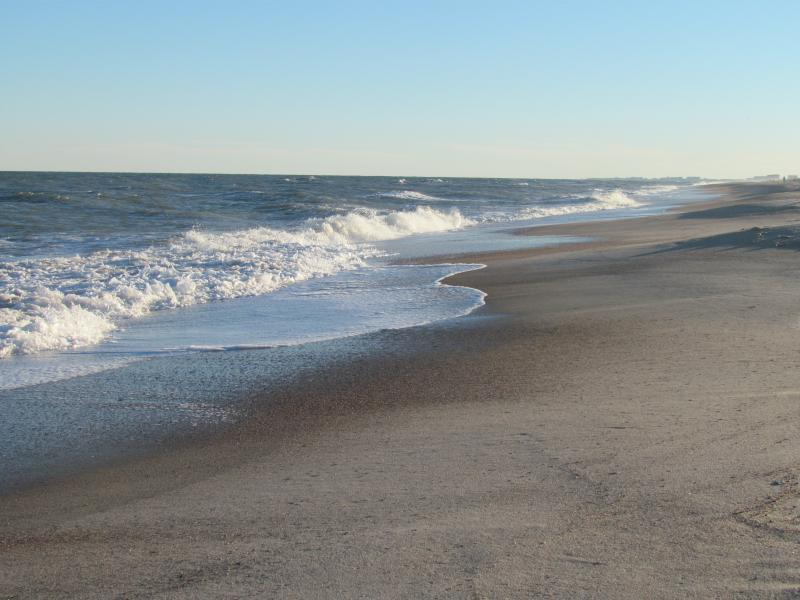 Can't get any closer to the Beach! - Direct Ocean Front - Free Wifi - Amelia Island - rentals