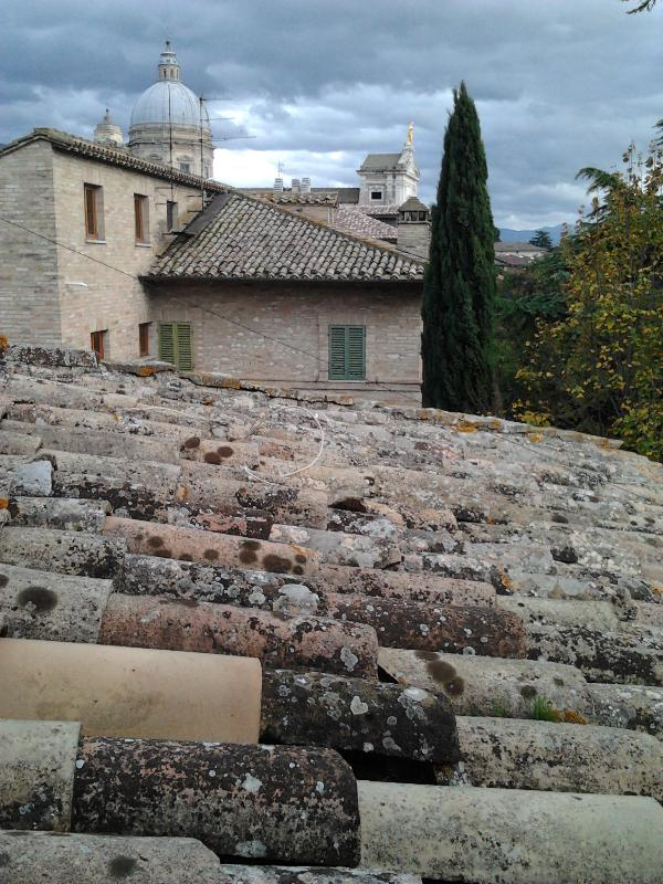 "Panorama - ""Casa Fulvia""- Apartment in Assisi, Umbria, Italy - Assisi - rentals"