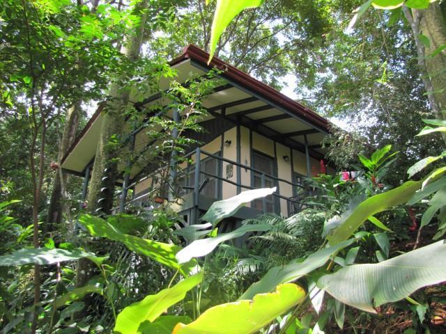 Casa Selva in its jungle setting - The quintessential jungle cabin, Casa Selva! - Dominical - rentals