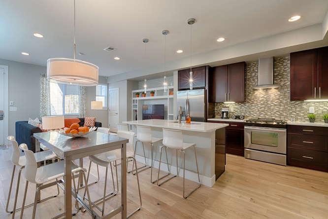 Stunning modern interior - no expense spared! - Stunning home & Modern luxury in Downtown Denver! - Denver - rentals