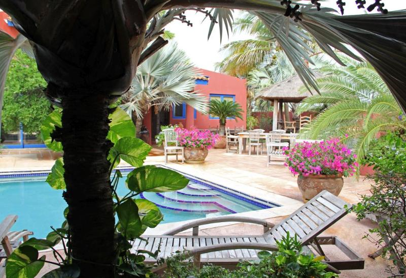 Large shared pool and heated jacuzzi, lush garden setting - La Maison Aruba - Studio #1  Studio with pool 800 - Noord - rentals
