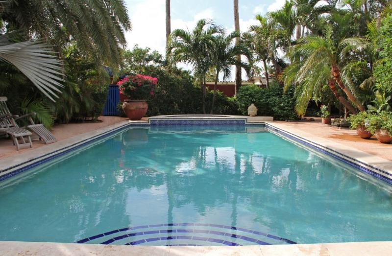 Pool La Maison - La Maison Aruba - Studio #2 Studio with pool 800 y - Palm/Eagle Beach - rentals