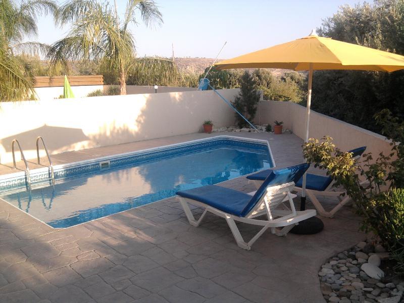 Swimming - Pissouri Holiday Villa - Pissouri - rentals