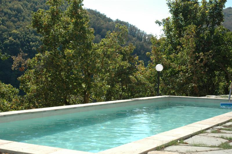 The shared pool is in a sheltered spot with delightful mountain views - Large historical house in stunning rural setting - Toano - rentals