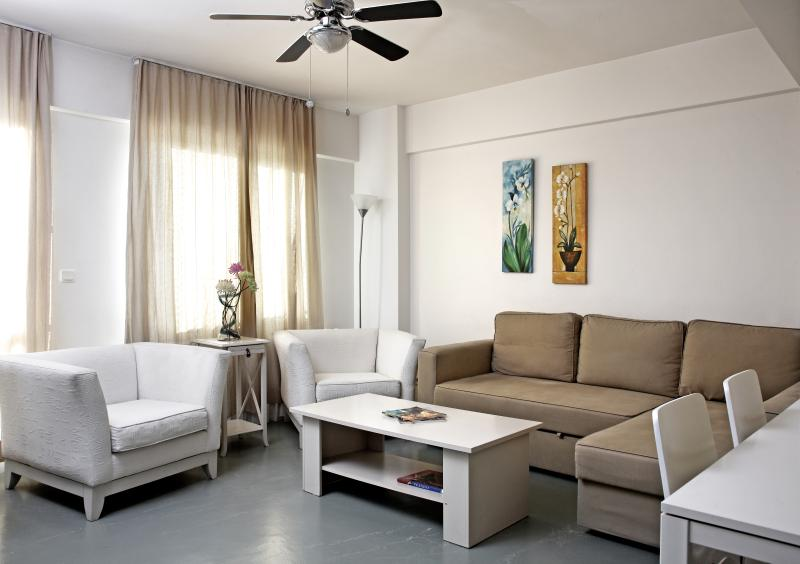 Living Room - Deluxe Duplex Penthouse Apartment - Istanbul - rentals