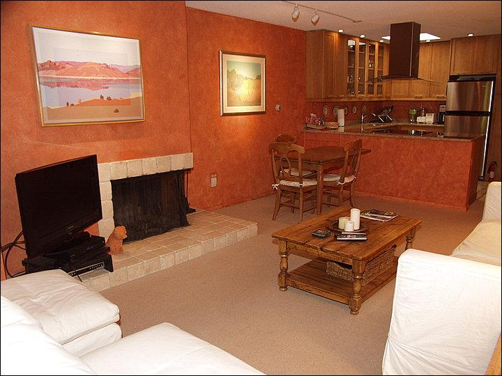 Main Living Area - 3 blocks from Lift 1A - Across the street from Wagner Park (5690) - Aspen - rentals