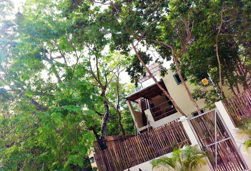 Casa Huuh. Design, natural and best location!!! - Image 1 - Tulum - rentals