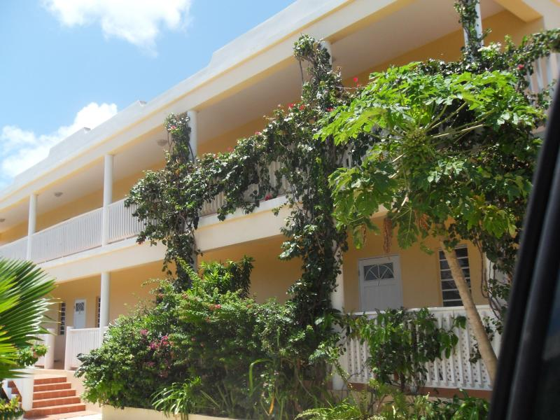 James Place Apartments - James Place Apartments, Mount Fortune , Anguilla - Island Harbour - rentals