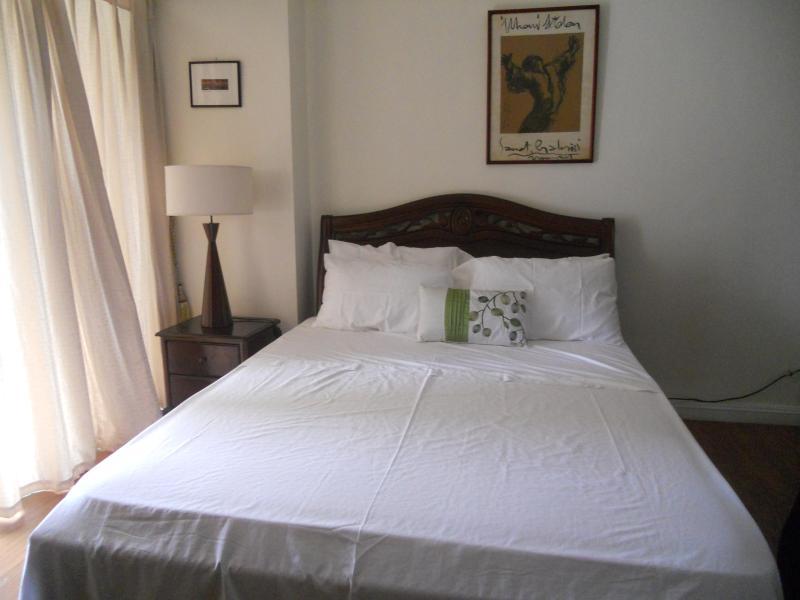 Cozy Space Beside Greenbelt - Image 1 - Makati - rentals